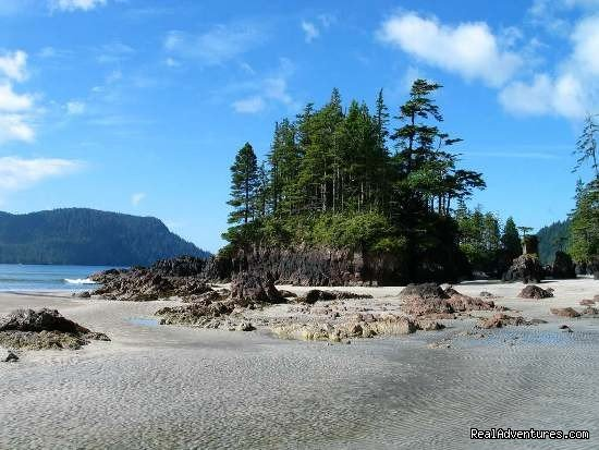 Picturesque Islet on the North Coast Trail