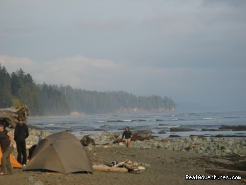 Misty morning on the West Coast Trail - Top 10 Hikes in the World-BC's West Coast Trail