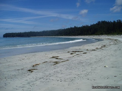 Nels Bight, North Coast Trail (#7 of 9) - Top 10 Hikes in the World-BC's West Coast Trail