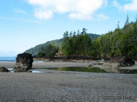 Sea Stack at a North Coast Beach - Top 10 Hikes in the World-BC's West Coast Trail