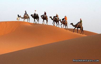 Real Camel Trekking & walking holidays in morocco