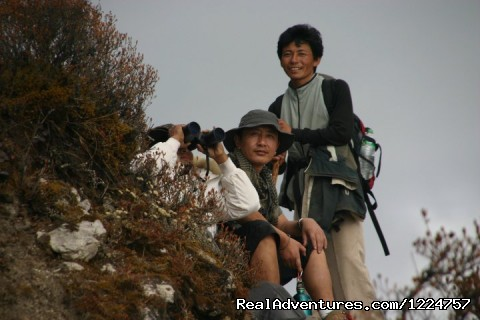 Your Travel Companion For Sikkim, Darjeeling. gangtok, India Sight-Seeing Tours