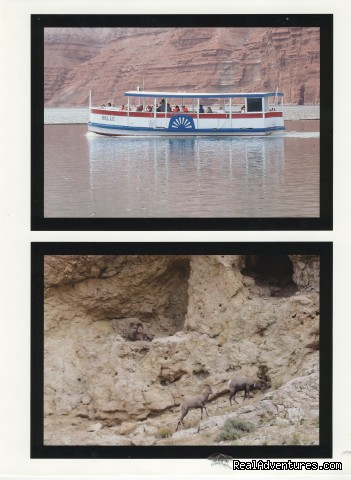 Hidden Treasure Charters & Wyoming Eco-tours Scenic Cruises & Boat Tours Wyoming