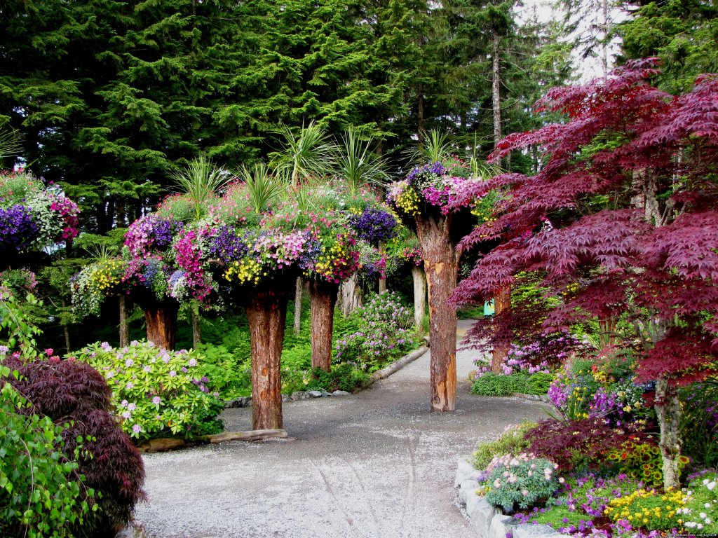 Discover a botanical garden paradise nestled in the midst of the mighty Tongass National Forest. Guided tours aboard easily accessible shuttles escort you through beautifully designed landscapes and into the heart of the Alaskan temperate rainforest.