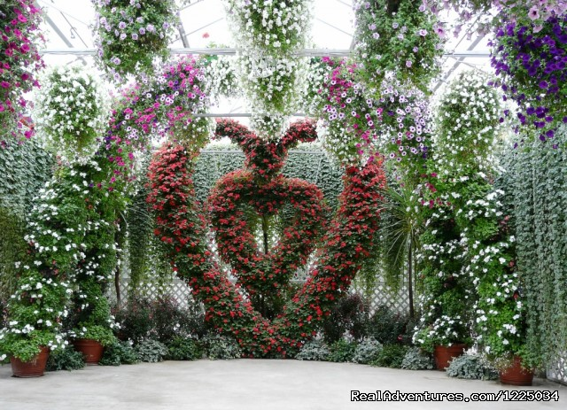 Floral Heart (#3 of 4) - Alaskan Botanical Garden Adventures