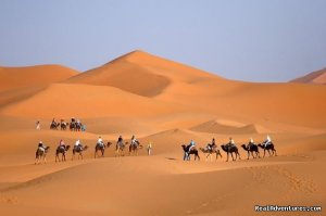 Camel trekking Morocco / ride camel in desert, Marrakech, Morocco Sight-Seeing Tours