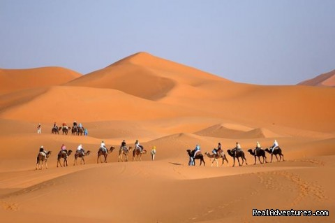morocco tours, camel trekking in morocco (#1 of 1) - Camel trekking Morocco / ride camel in desert,