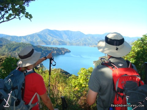Amazing views - Queen Charlotte Track
