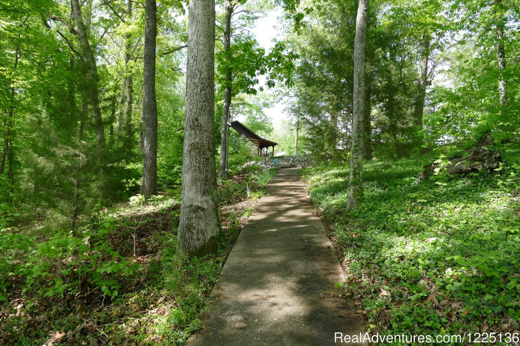 Pathway to Dock - Lighted & has Electri | Image #15/24 | Kentucky Lake Log Home