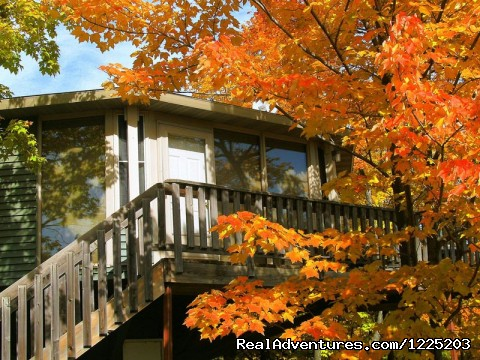 Autumn Color at Mountain Villas - Spirit Mountain Villas - Duluth Four Season Resort