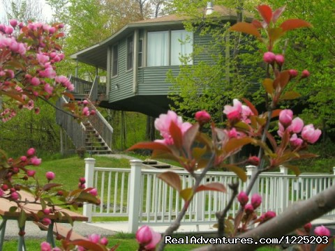 Mama Bear's Den, Villa #11, in the Spring - Spirit Mountain Villas - Duluth Four Season Resort