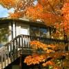 Autumn Color at Mountain Villas