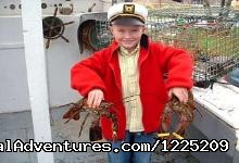 Experience:  Lobster Lover (#4 of 6) - Experience PEI