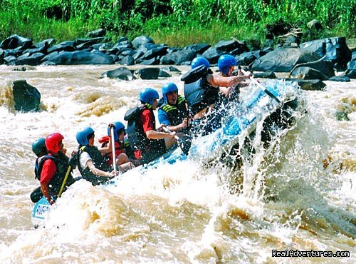 Begin the tour with 2 hours drive to Beaufort railway station. Thereafter, board on a train and proceed the trip to Pangi Station, a place you can have your rafting. The rafting route covers 9 km of the Padas river and graded to Grade 3 -4