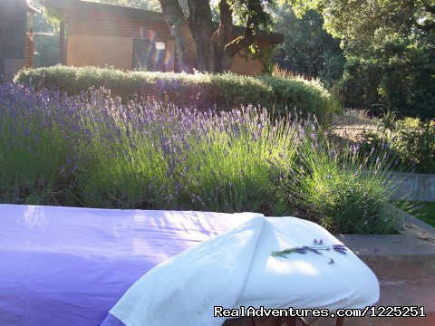 - Sonoma Bodyworks Traveling Spa