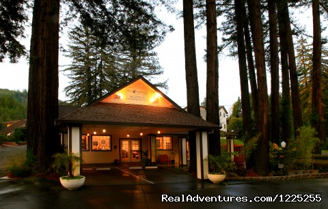 Lobby/ Redwood Room - Romantic Wine Country, Spa and Redwoods Getaway