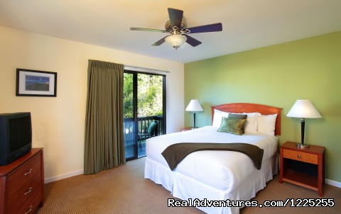 Vineyard Room  - Romantic Wine Country, Spa and Redwoods Getaway