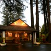 Romantic Wine Country, Spa and Redwoods Getaway
