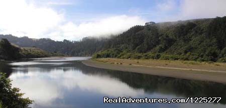 Image #1 of 1 - WaterTreks EcoTours Jenner Kayak Rentals