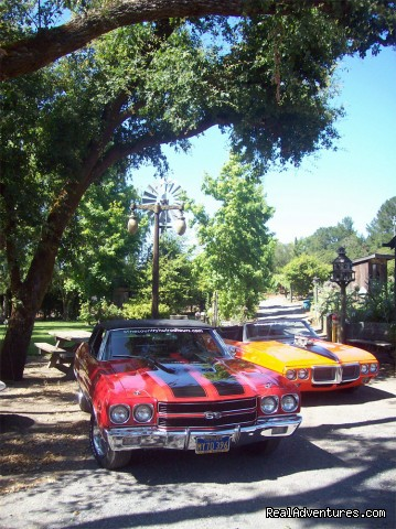 Hot Rod Tours picnic at Summerwine Park (#3 of 7) - Wine Country Hot Rod Tours