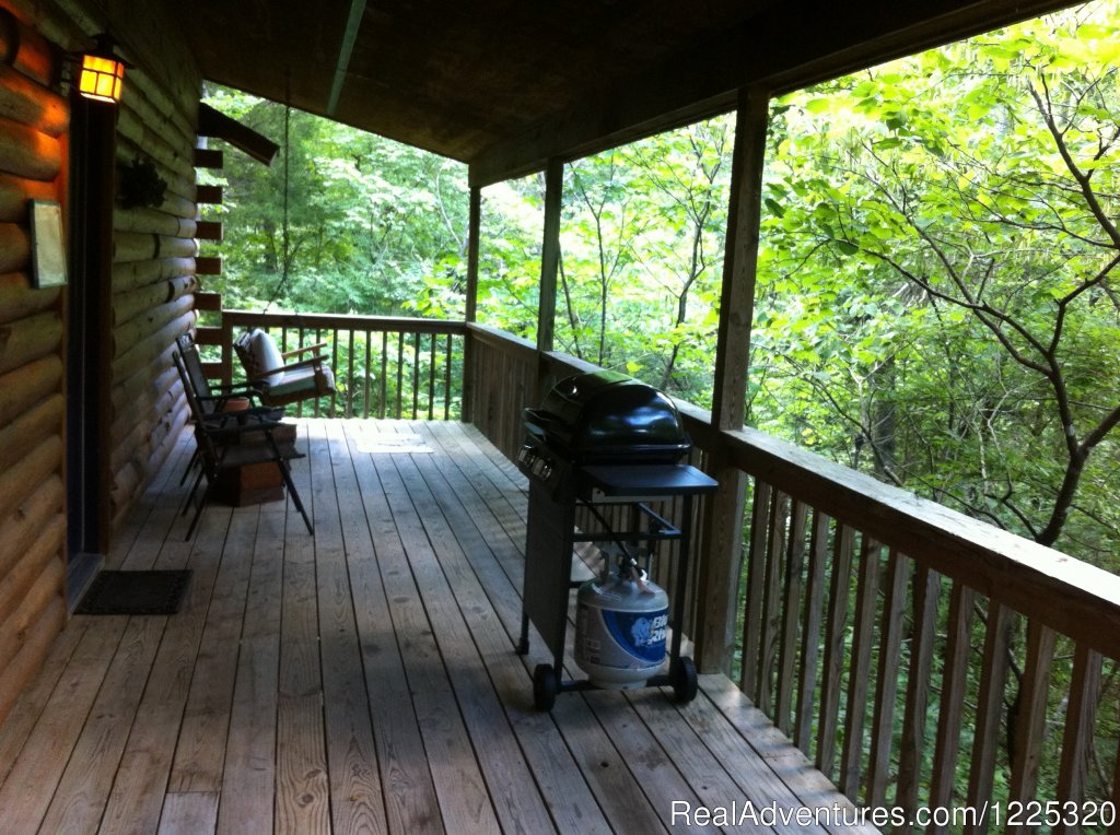 Midnight Forrest view of the deck | Image #10/26 | Wisteria Lane Incurably Romantic Log Cabin Lodging