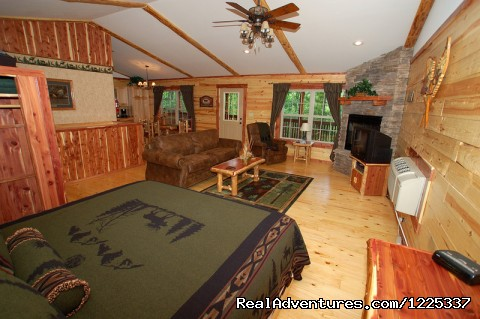 - Lake Forest Cabins in the Beaver Lake Area