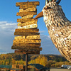 Chicken Gold Camp and Outpost Campgrounds & RV Parks Chicken, United States