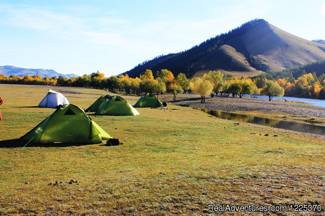 - Experience horseback adventure in Mongolia