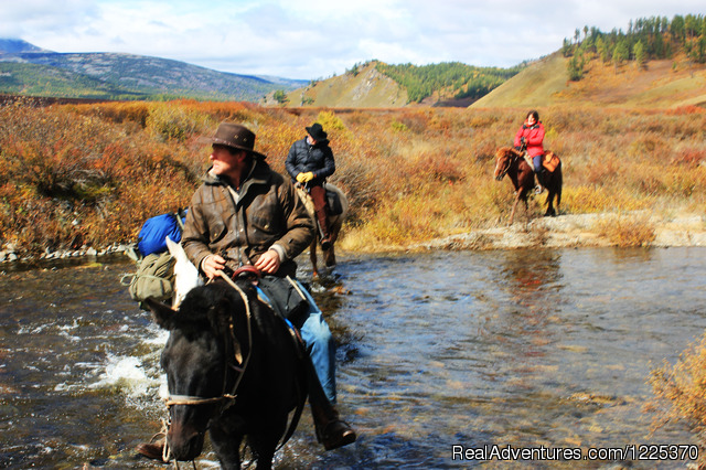 Experience horseback adventure in Mongolia