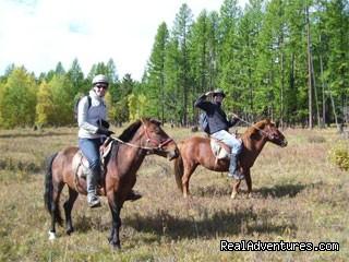 Experience horseback adventure in Mongolia Horse trekking in Arkhangai