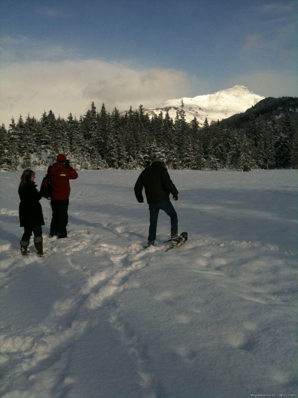 Snowshoe Tour | Image #7/17 | Salmon Berry Travel & Tours