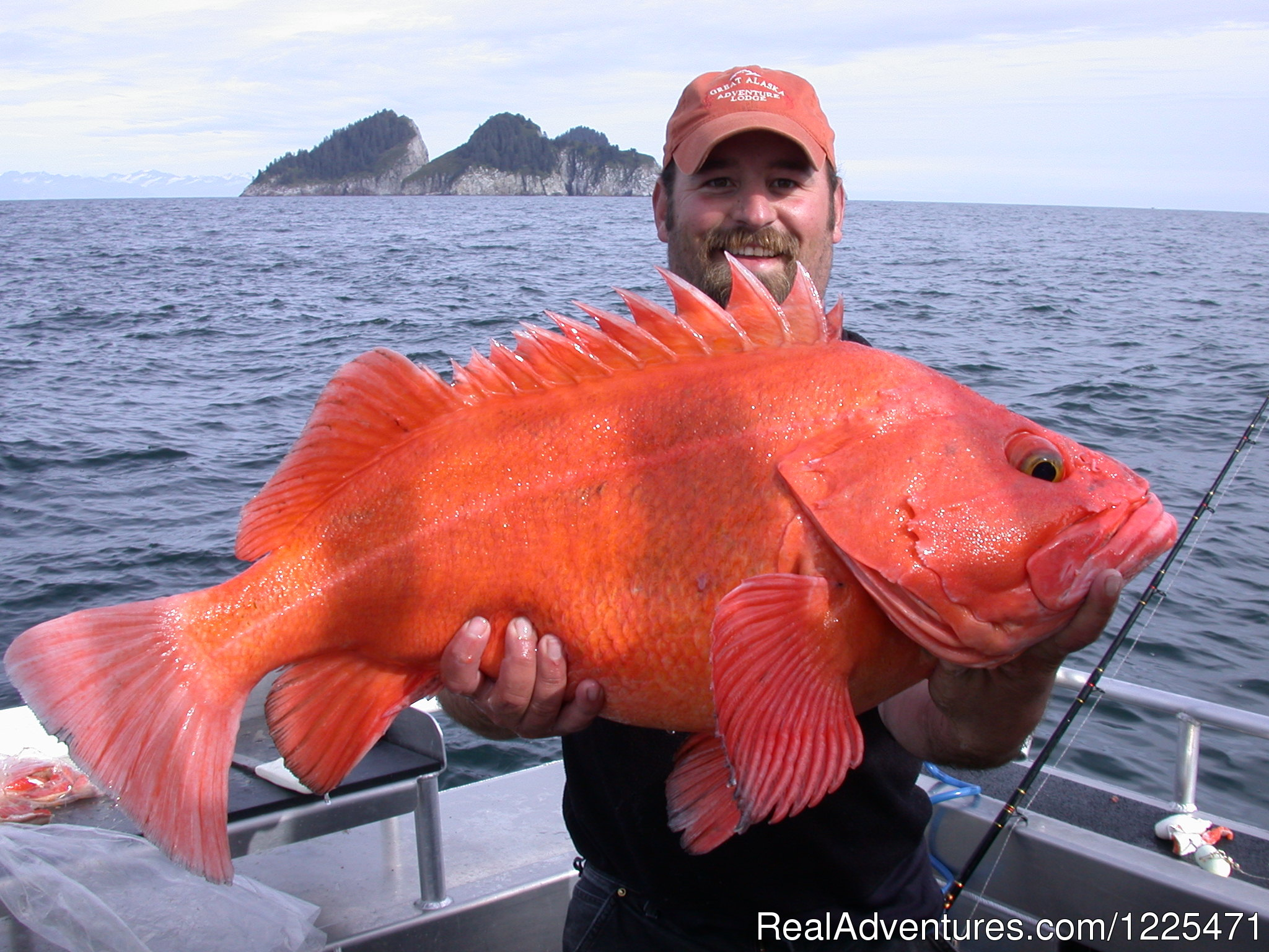Prince William Sound Yelloweye Rockfish