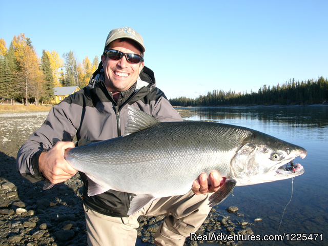 Kenai Silver Salmon - Alaska's Destination for Adventure