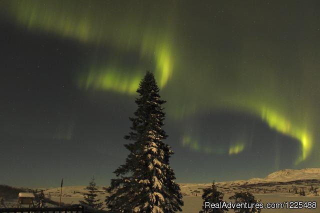 Image #2 of 3 - Caribou Lodge
