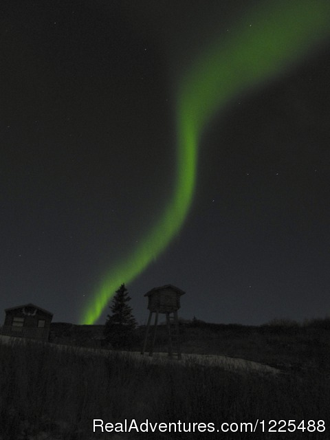 Northern Lights with Cache - Caribou Lodge Alaska