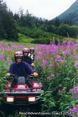 Image #5 of 6 - Alaska ATV Adventures