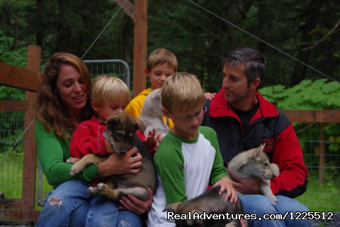 Image #6 of 9 - IdidaRide Sled Dog Tours