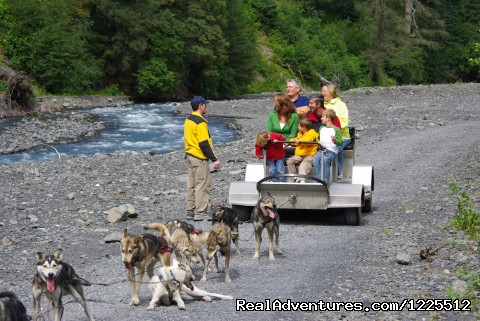 - IdidaRide Wilderness Sled Dog Tours