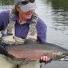 Get Started Fly Fishing with us in Alaska Silver Salmon in Prince William Sound, AK