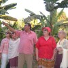 Banana island tour