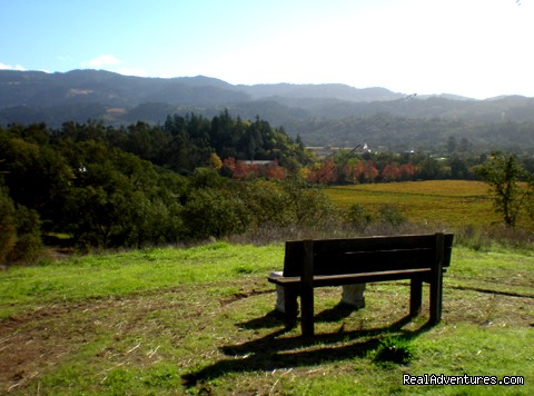 Hiking and sitting at Hillcrest Country Inn - Napa Valley's Destination Getaway at Hillcrest B&B
