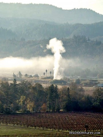 Calistoga Geyser visible - Napa Valley's Destination Getaway at Hillcrest B&B