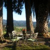 Napa Valley's Destination Getaway at Hillcrest B&B Calistoga, California Bed & Breakfasts