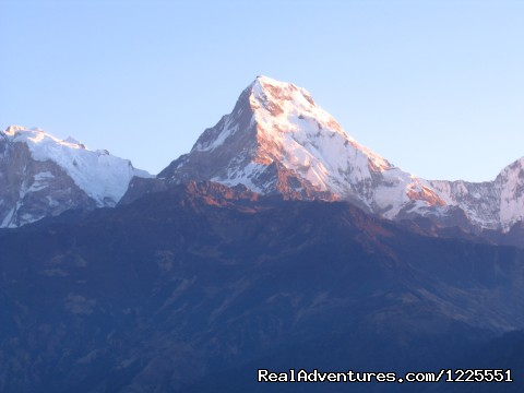 Image #10 of 14 - Annapurna  Base Camp Trek