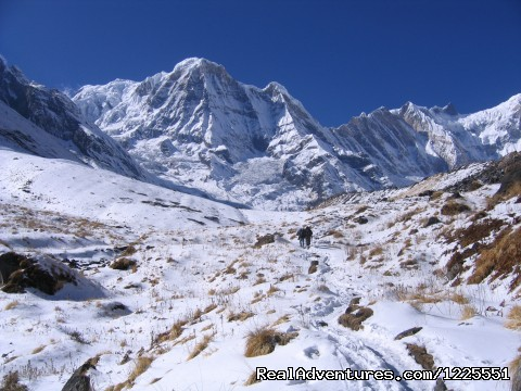 Image #12 of 14 - Annapurna  Base Camp Trek