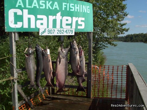 Nicwe Kings - A Alaska Fishing Lodge and Soldotna B&B