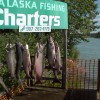 A Alaska Fishing Lodge and Soldotna B&B Nicwe Kings