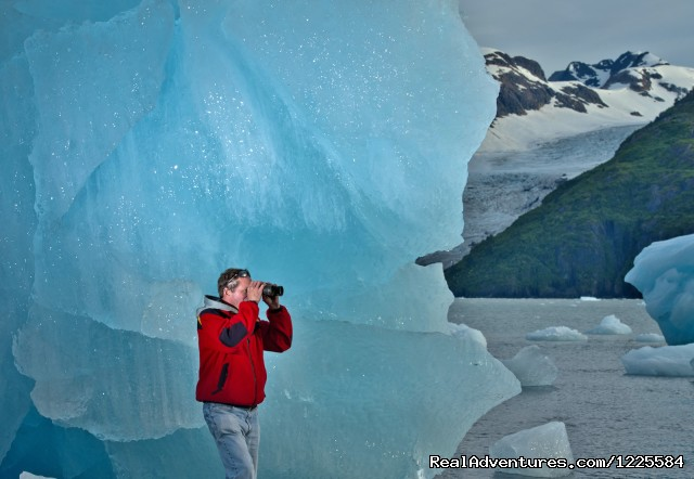Chenega Glacier Prince WIlliam Sound (#18 of 25) - Sky Trekking Alaska