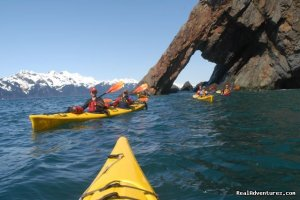Sunny Cove Sea Kayaking Seward, Alaska Kayaking & Canoeing