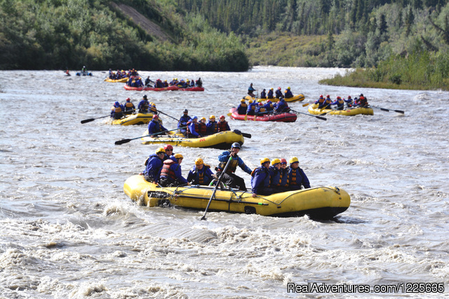 Denali Outdoor Center - Raft, Kayak, Bike & Camp